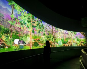 Story of the forest 3_ Image Courtesy of teamLab