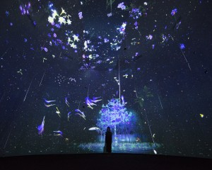 Story of the forest 5_ Image Courtesy of teamLab
