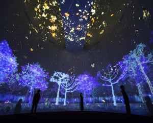 Story of the forest 6_ Image Courtesy of teamLab